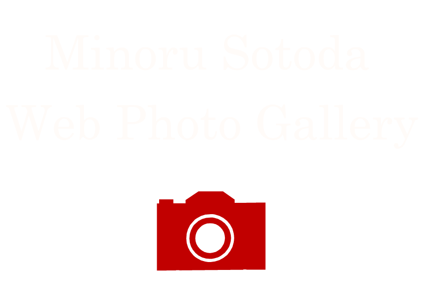 Minoru Sotoda Web Photo Gallery -