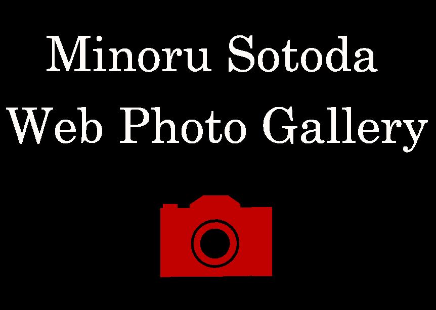 Minoru Sotoda Web Photo Gallery -